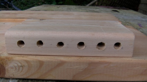 Entrance holes drilled more or less in a straight line.