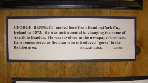 George Bennett brought gorse to Bandon