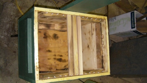 Prewaxed top bars installed into former swarm bait box after scorching the inside.