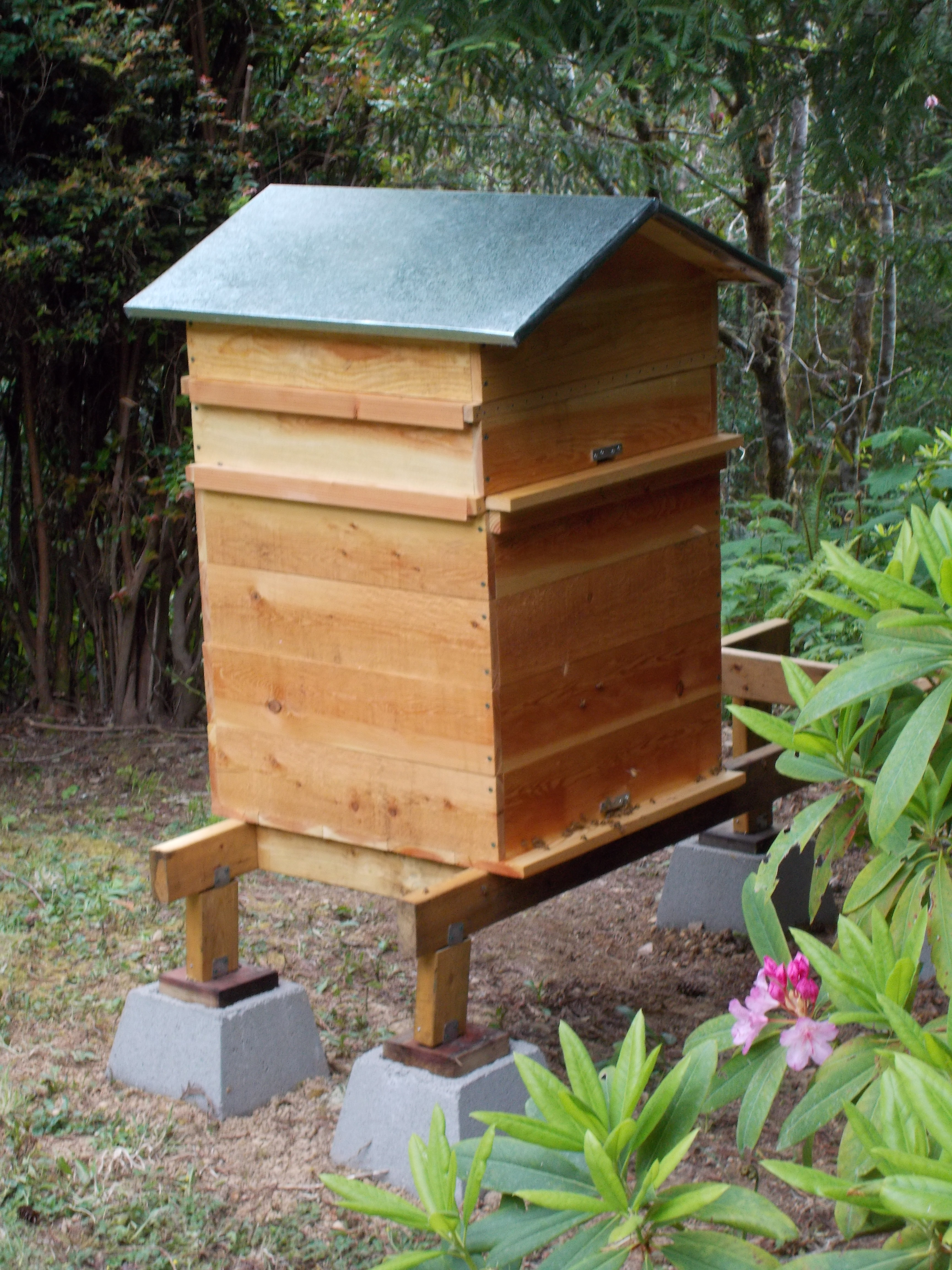 Warre Hive   Adventures in Natural Beekeeping   Page 2