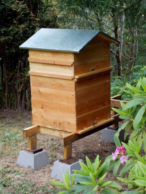 Vernon S Perone Hive Adventures In Natural Beekeeping