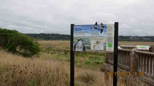 Welcome to the Bandon Marsh National Wildlife Refuge