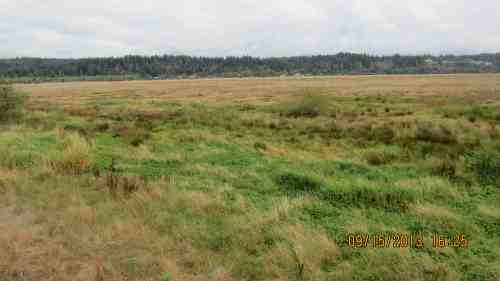 The Bandon Marsh is a few miles from me...why do they have to spray so close to me?