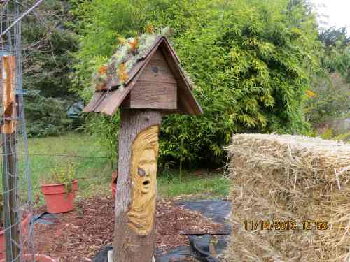 November 14...I finished her 'bird house' bonnet.  I hope she likes it.