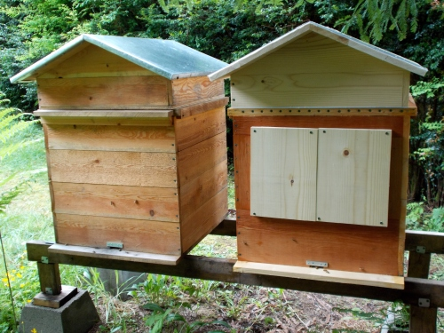 April 28, 2014...the old Perone is on the left.  The colony in the older hive was started from a swarm 11 months ago.  Clearly it over-wintered successfully under the Perone system.