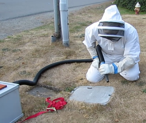We didn't know how big the swarm was.  Tim from the City Water Dept. called to say there was a swarm of bees he had to get rid of.   Jeff is taking precautions in approaching the area.