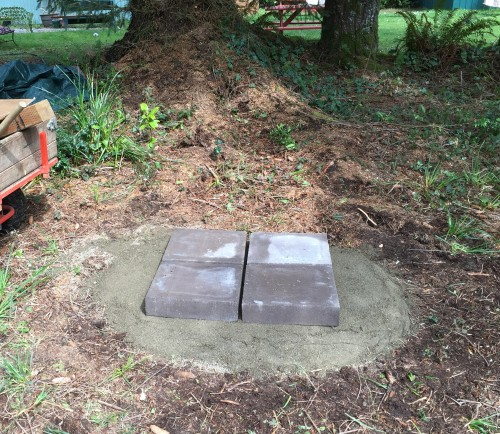 While my wife was transplanting, I was preparing a base for my new log hive.  The wood carver said he would bring it out Monday.  I think I'm ready with packed sand under these heavy cement blocks.
