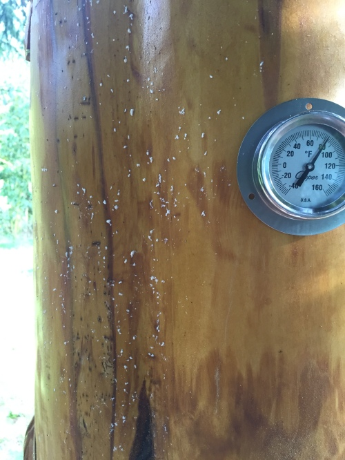 Temperature at 80F (26C).  After they, I spotted wax flakes.  (The bees were all ready to build comb in this hive, I felt bad for them)