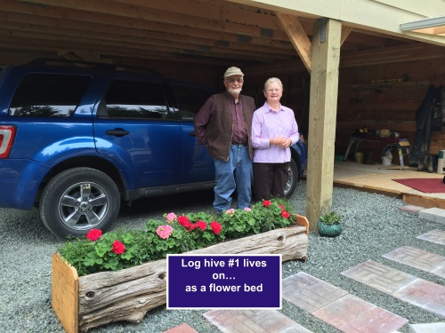 What do you do with a log hive that has rotted out?  If you're Hal and Patti Strain, you'll make a pretty flower bed out of it.  They've already had some requests to make more.