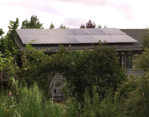 I wanted to ask the owner of Crow Feather Farm, about the solar panels array, but I was taken by all the flowers and time was short.