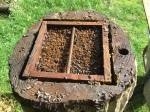 2428 Bee Beard, hat off, sow bugs, moisture,2-20-16