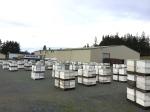 181 Several hundred hives,3-24-15