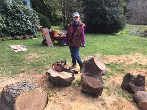 4625-sue-shows-off-heirloom-stump-pulling-gear-3-2-17-copy