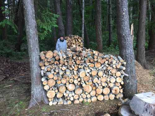 4644-sue-shows-off-her-wood-stack-3-2-17-copy